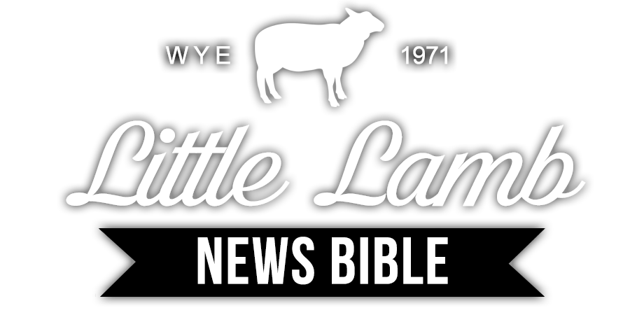 Little Lamb at WYE Bible